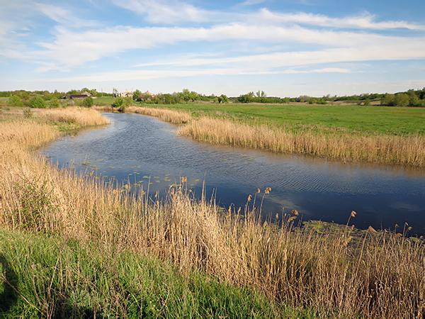 река Березовка в Аннинском районе